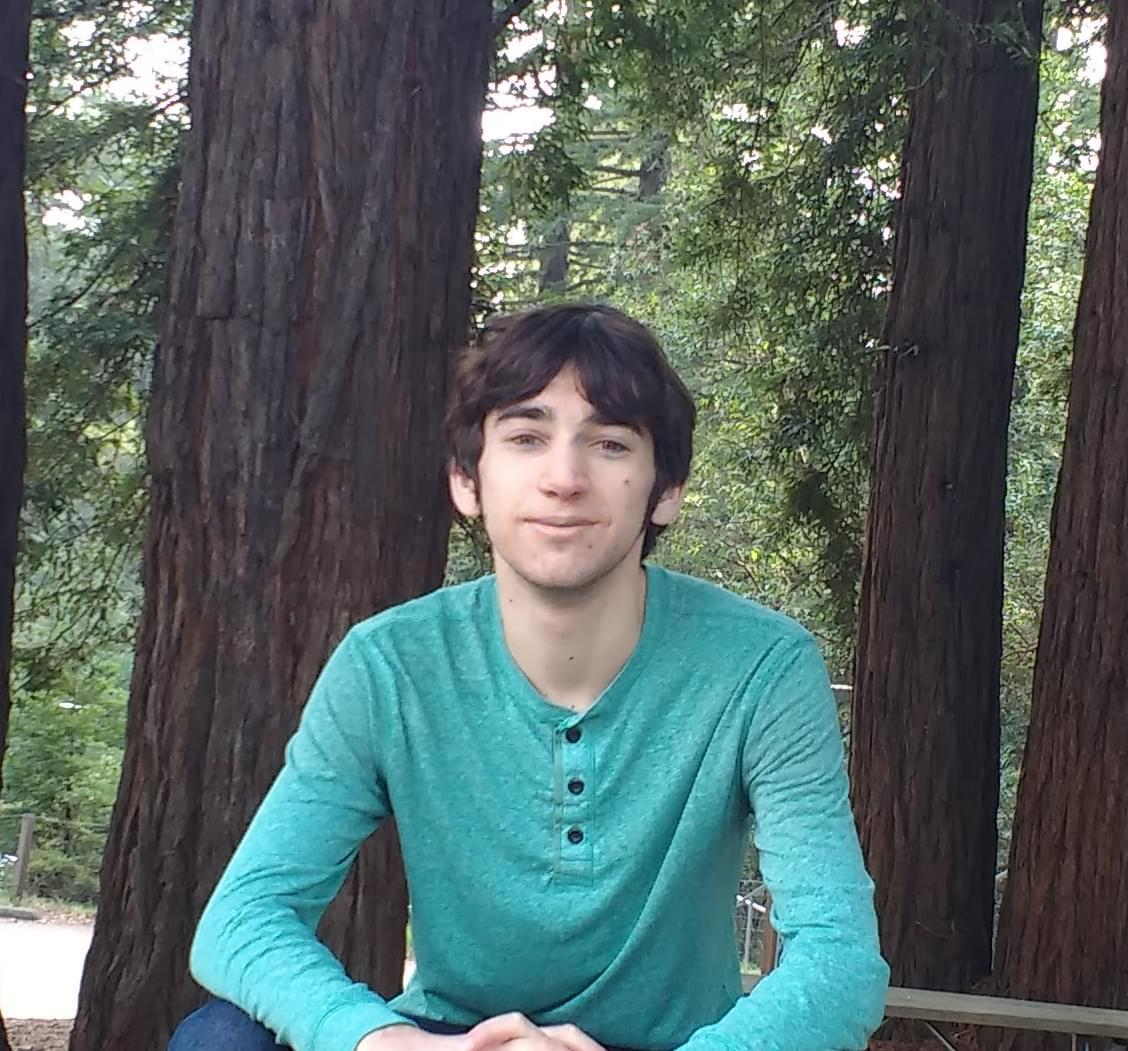 A picture of me sitting in front of some redwood trees
